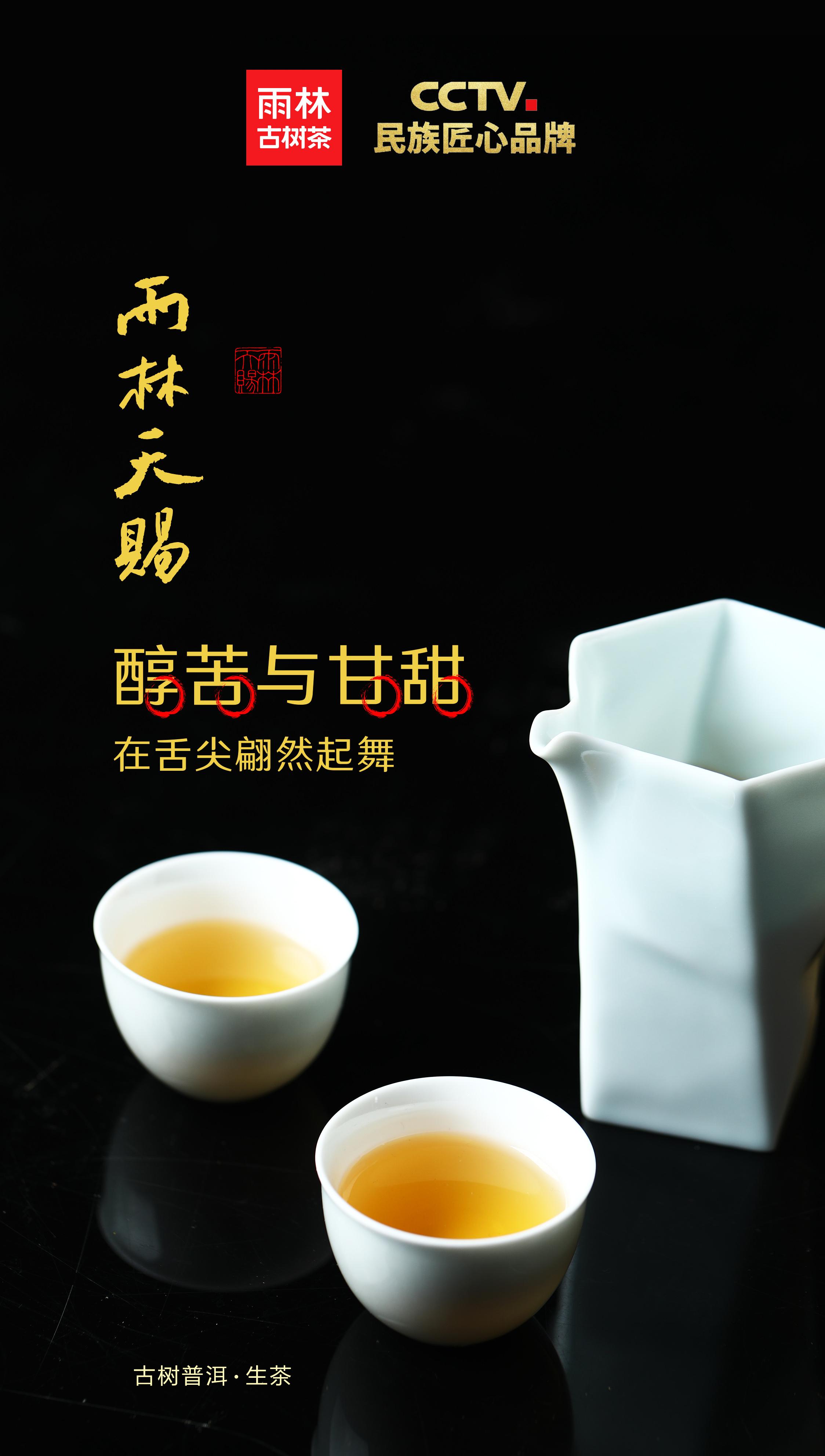 云南古树普洱茶_雨林天赐-「雨林古树茶官网」古树茶 喝雨林───雨林古树茶 ...