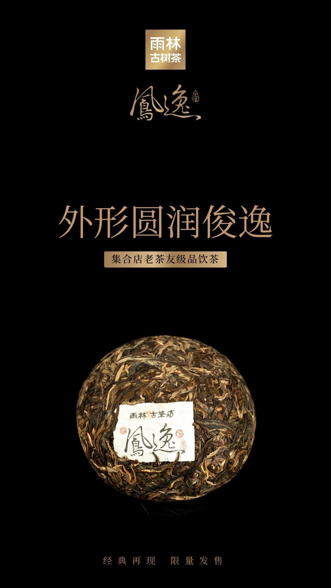 凤逸沱茶3.jpg
