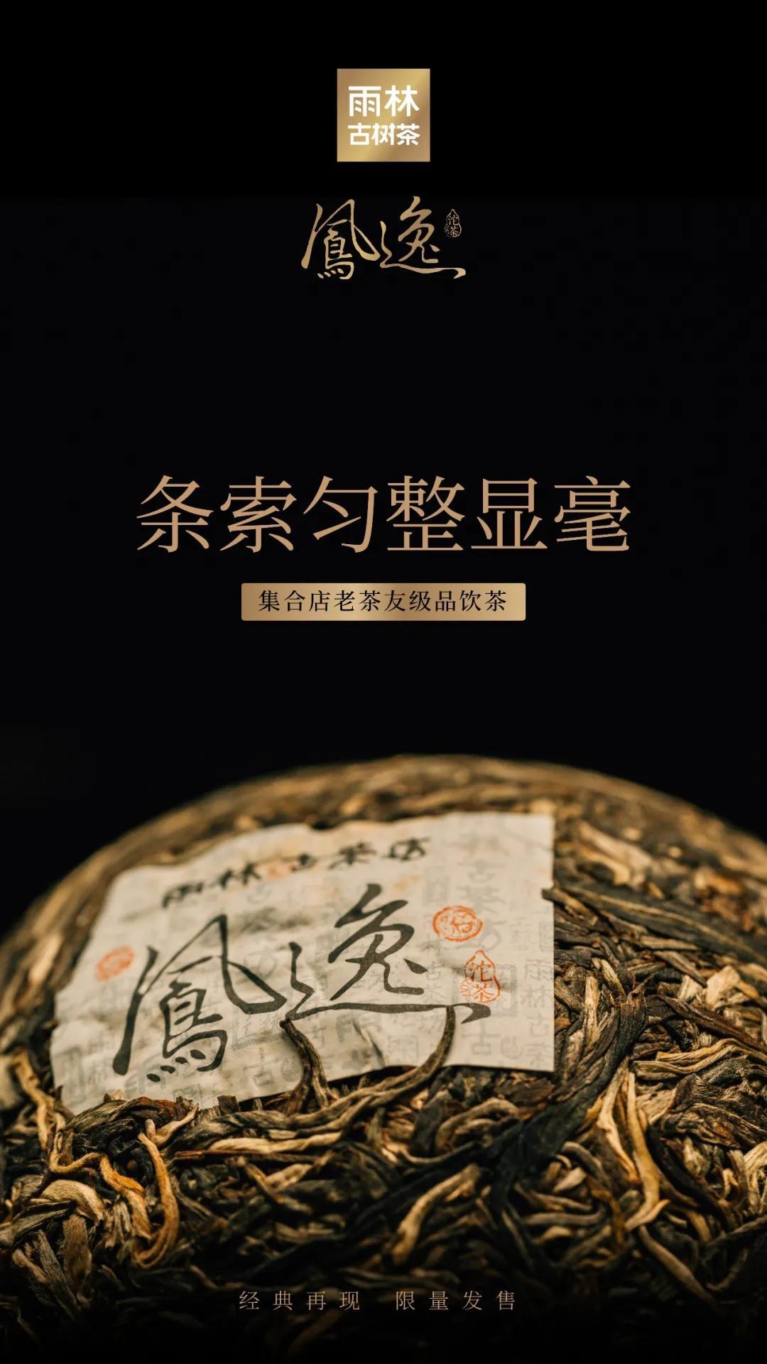 凤逸沱茶4.jpg