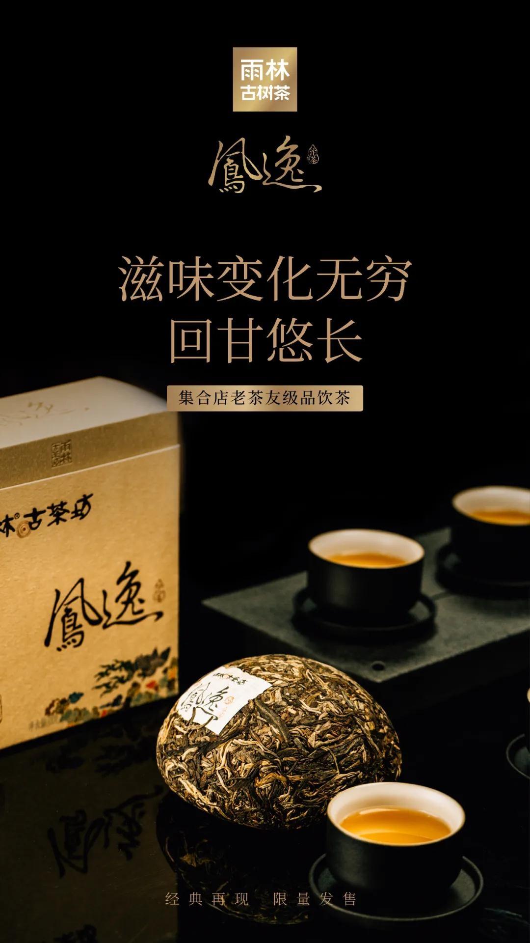 凤逸沱茶7.jpg