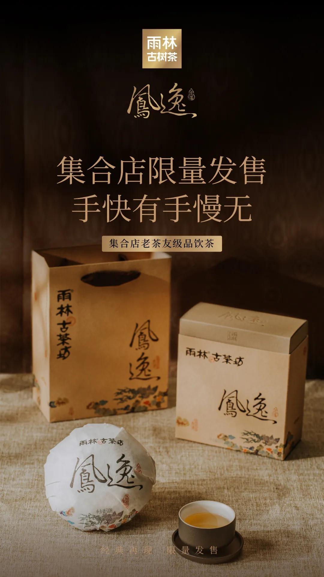 凤逸沱茶9.jpg